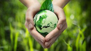 Les engagements écologiques d'Hubert Cloix
